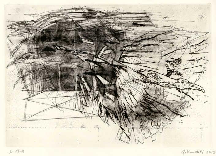 La fuga dell'ibis - 2012 acquaforte e acquatinta cm.45x32